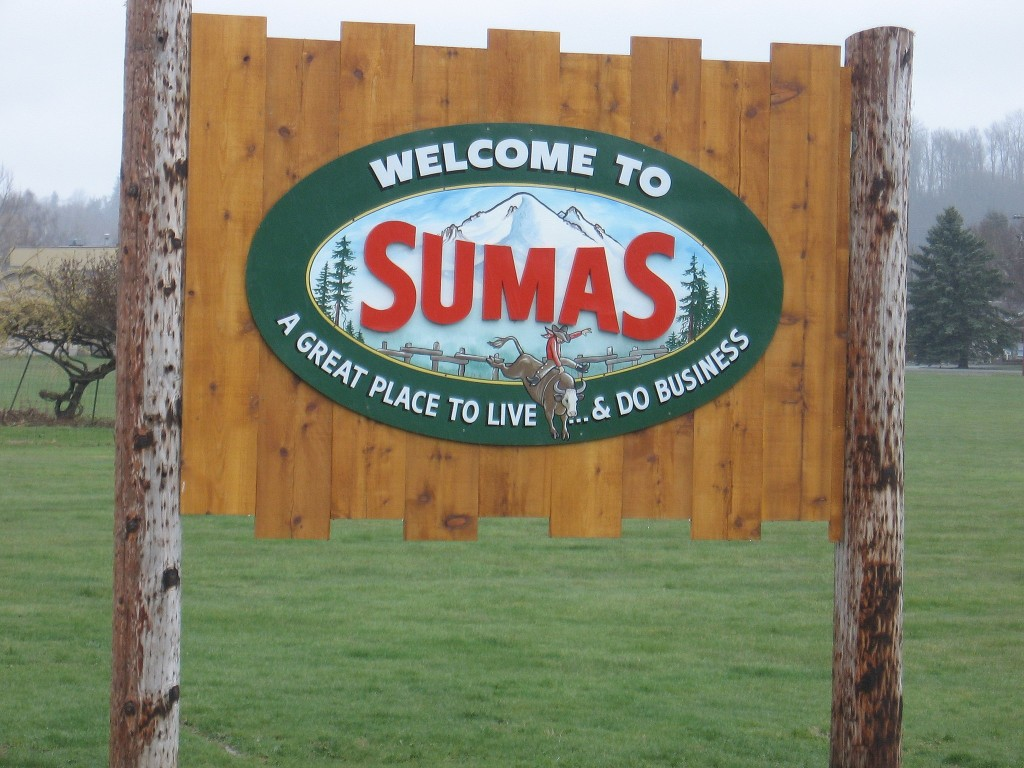 Sumas Real Estate